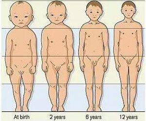 infant grow